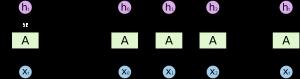 Развернутая рекуррентная сеть